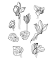 cyclamens pen drawing set vector image
