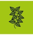 tea leaves design vector image