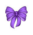 decorative realistic purple bow isolated on white vector image