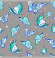 pattern of blue butterflies on a gray vector image