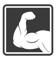 power male muscle arm silhouette icon vector image