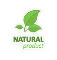Natural product Green leaves on a white background vector image