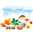 Autumn natural objects vector image