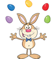 Cartoon rabbit juggling eggs vector image vector image