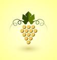 Yellow grape vector image