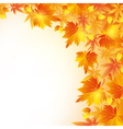 Autumn golden background with leaf fall vector image vector image