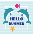Hello Summer card with playing dolphins vector image