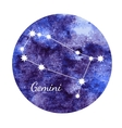 Watercolor horoscope sign Gemini vector image