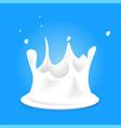 white milk splashes fresh organic drink on blue vector image