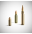 Rifle and pistol bullets isolated on white vector image