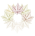 Maple Leaves vector image