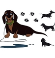 sitting dachshund vector image vector image