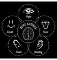 Five senses scheme vector image vector image