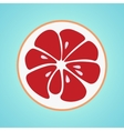 Grapefruit stylish icon Retro juicy fruit logo vector image