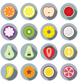 Piece of Fruits Icon vector image