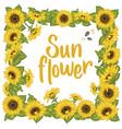 sunflower sunflower card design vector image