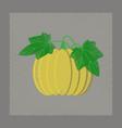 flat shading style plant cucurbita vector image
