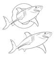 Drawing of a terrible shark vector image