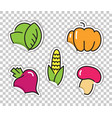 stickers with images of vegetables cabbage vector image