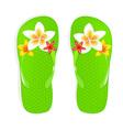 Flip Flops With Flowers vector image
