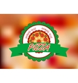 Pizza banner on color background vector image vector image