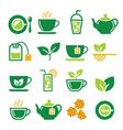 Green tea and ice tea icons set vector image