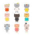 stylish cats cute kittens for your design trendy vector image