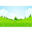lush green fields vector image vector image