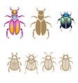beetle set vector image