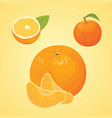 collection of fresh ripe oranges and vector image