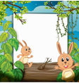 Dancing rabbits and a white board vector image vector image