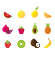 juicy fruit icons set isolated vector image vector image