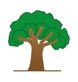 large green tree isolated icon design vector image
