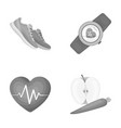 heart rhythm vitamins and other equipment for vector image