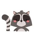 cute raccoon cartoon icon vector image
