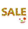 inscription sale of autumn leaves vector image