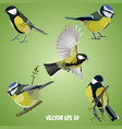 set of realistic tits on a light green background vector image