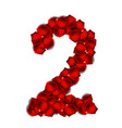 rose petals realistic number vector image vector image