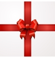 Bright red bow with tape on white vector image