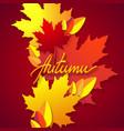 autumn seasonal typographic vector image