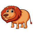cute lion on white background vector image