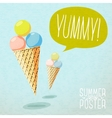 Cute summer poster - cones with yummy ice-cream vector image