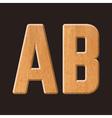 Sans serif geometric font vector image