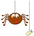 Spider and prey vector image vector image