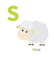 Letter S Ship Zoo alphabet English abc with vector image vector image