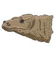 Komodo dragon vector image vector image