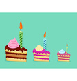 Set of different cake slices For birthday card vector image