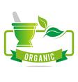 pharmacy mashed drugs organic product icon vector image