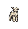 sketch cartoon style lamb isolated vector image
