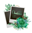 Christmas card with fir and succulents vector image vector image